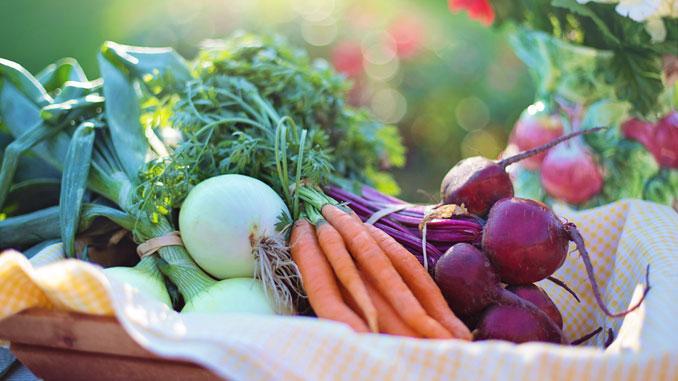 Choisir votre régime alimentaire pour bien voir, et longtemps.